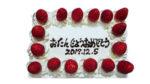 誕生ケーキ、角型/特殊形状に付き、一般販売していません。